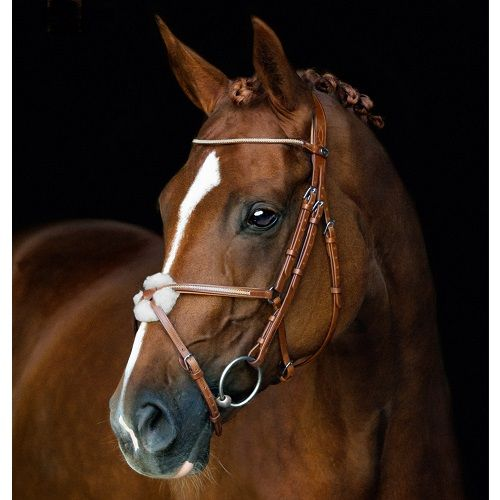 Skara Hästsport Den moderna hästsportbutiken med snabba