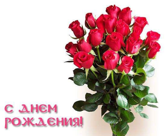 Krasivye Kartinki S Dnem Rozhdeniya Skachat Besplatno 37 Foto Prikolnye Kartinki I Yumor Good Morning Flowers Plants Flowers
