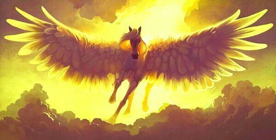 Angel pegasus