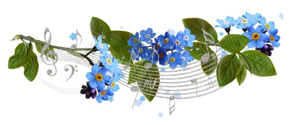 fleurs, éclat, ornement, flowers, tubes, bouquets,: