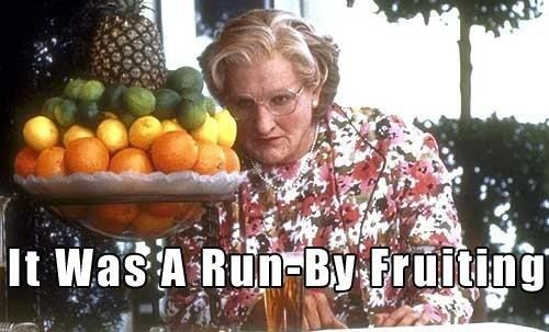 17 Of The Most Memorable Robin Williams Movie Quotes - Mrs Doubtfire