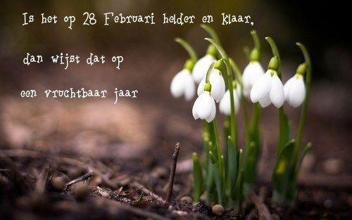 Spreuk Februari