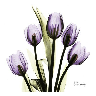 Purple Flower Wall Decor - Purple Bedroom Ideas