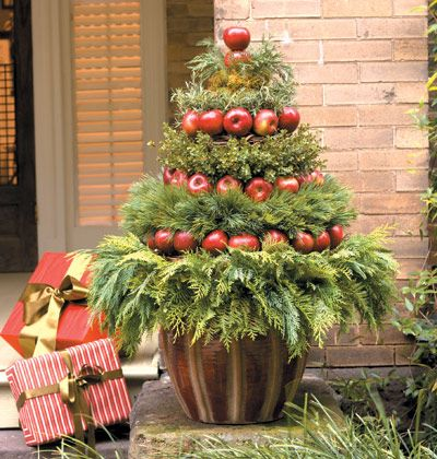 Christmas Topiary DIY made from Apples and Greenery in a pot on the front porch