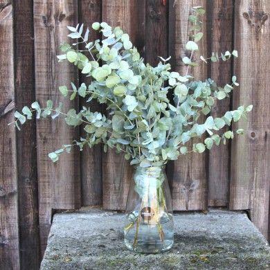 Blumenvase | Eucalyptus
