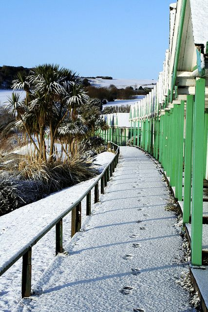 Snowy footprints in front of the beach huts at Langland Bay