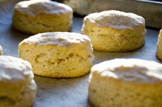 Biscuit Basics