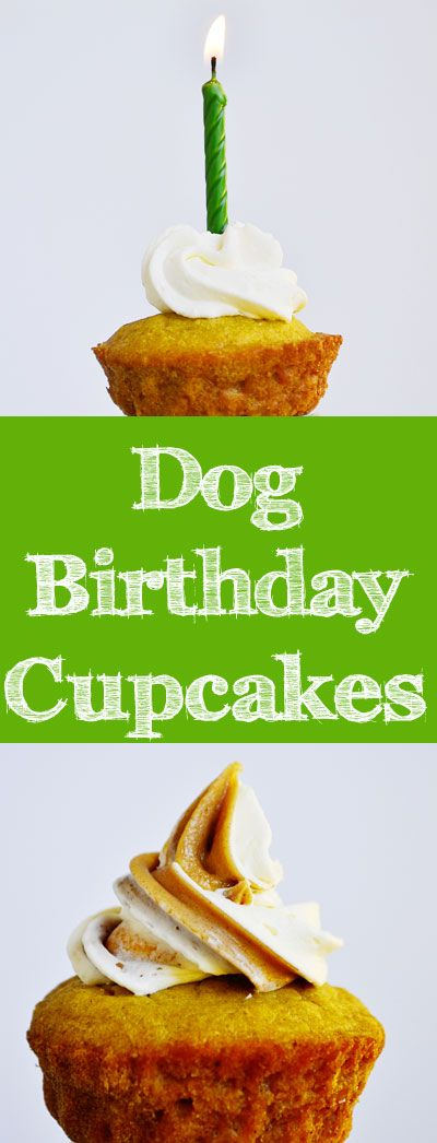 This dog cupcake recipe from our new book, The Healthy Hound Cookbook, also appears in Woman's Day magazine this month!