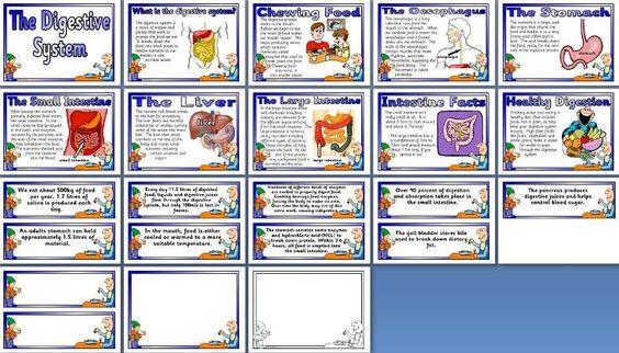 Classroom Display Ideas Ks3 ~ Pinterest the world s catalogue of ideas