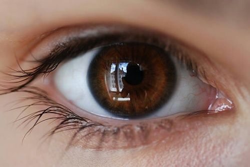 Image Uploaded By Gʟɨҭcҥ Find Images And Videos About Black Eyes And Brown On We Heart It The A Brown Eyes Aesthetic Beautiful Eyes Color Pretty Eyes Color