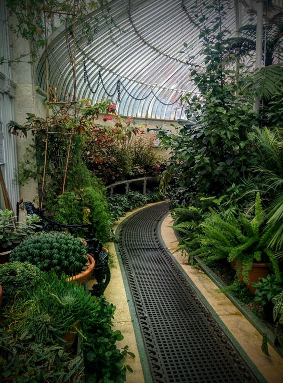 Botanic Gardens, Belfast.