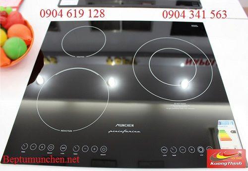 Xuất xứ của bếp điện từ Munchen QA 300I
