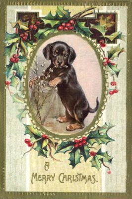 Dachshund Puppy Dog 1920's Reichert New Christmas Cards | eBay: