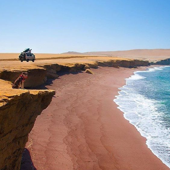Everything is negotiated. @benbenbuhben getting what he wants down Paracas National Park. Sometimes you just gotta pull over and take it all in through your lungs and with the constant wind in your face. Nothing like it huh. #vanlifediaries to share your escapades. Posted by @youandiandthesky by vanlifediaries
