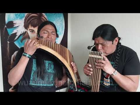 The Sound Of Silence Sonidos Del Silencio Panflute And Quenacho Wuauquikuna Youtube Native American Music Oldies Music Pan Flute