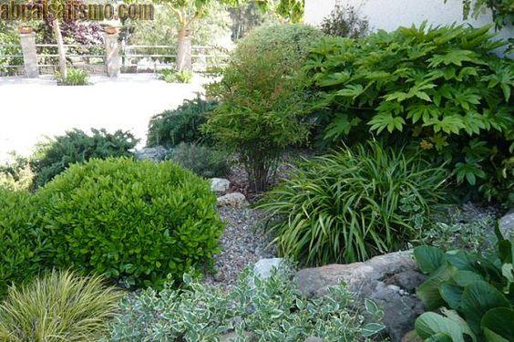 Jardines en sombra-p1040098.jpg