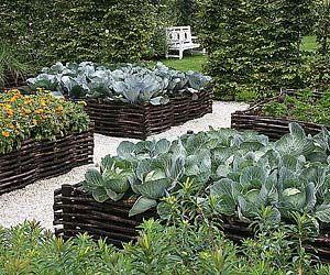 Ch ssis carr potager structurer le potager jardins am nagement de jard - Structurer son jardin ...