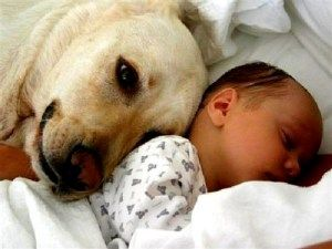 Don't worry little human - I'll love and protect you for all my life! ❤