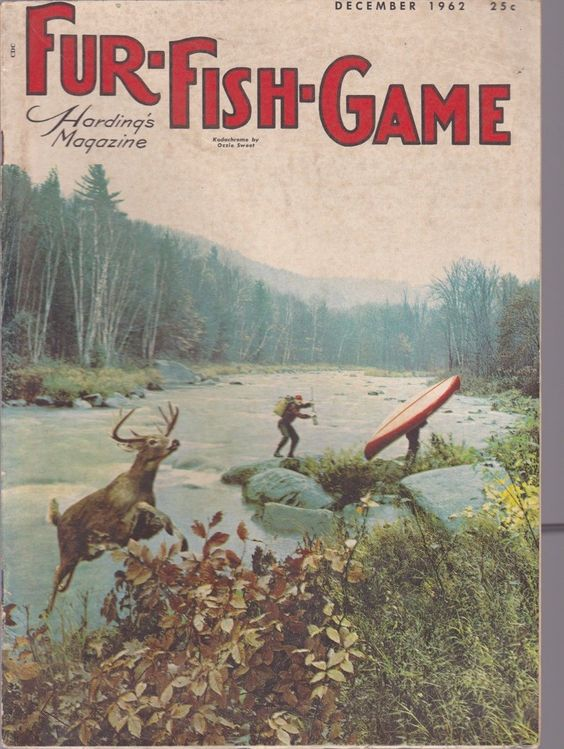 vintage december 1962 fur fish game magazine hunting