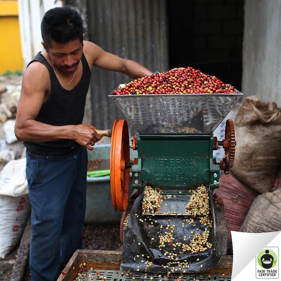 Click 'like' if you're thankful for the many hands that make your morning cup of #coffee possible. #FairTrade: