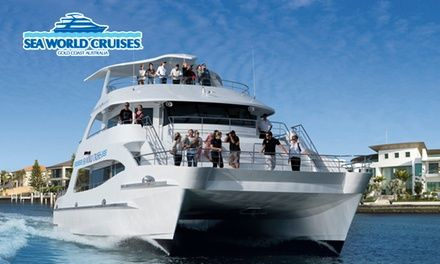 Cruise through the Gold Coast's calm waters with this awarded experience; listen to expert commentary and keep a lookout for wildlife