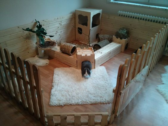 nice corner bunny pen, using picket fencing, detachable gate allows bunny to roam house  during day and sleep inside at night