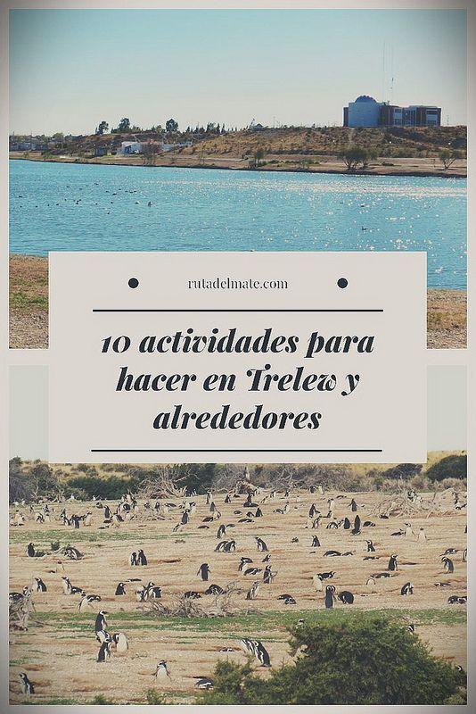 10 Lugares Que Ver En Trelew Y Alrededores Ruta Del Mate Vacaciones En Argentina Viaje Argentina Viajes Fotos