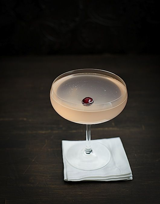 Use up those last few cranberries in a cranberry gin blush cocktail.