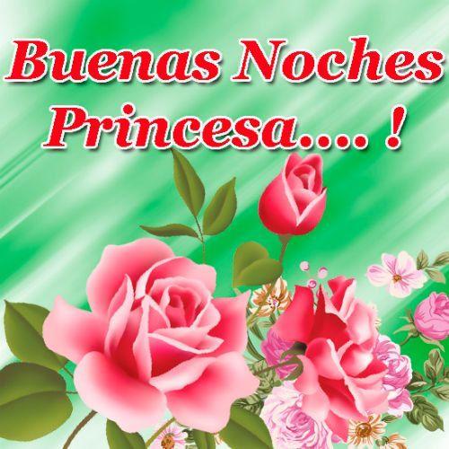 Que Tengas Unas Buenas Noches Princesa Beautiful Nature Flowers Good Night