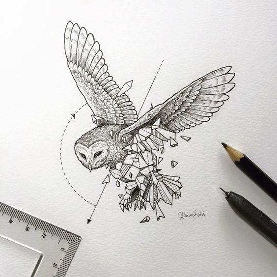 Geometric-Beasts-illustrations-10 Des illustrations vraiment délicates et pleine d'imagination... cette chouette est magnifique.