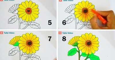 Terkeren 20 Gambar Bunga Matahari Pensil Cara Mudah Menggambar Bunga Matahari Jual Fancy Pensil Susun Bunga Mat Gambar Bunga Menggambar Bunga Matahari Bunga