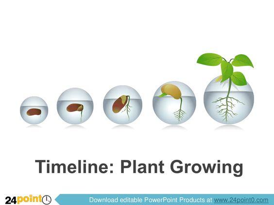 Editable Powerpoint Template  Timeline Plant Growing Via
