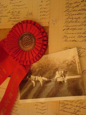 Horse show ribbon   The Polohouse