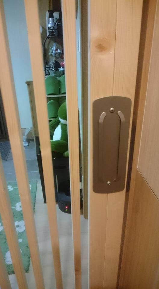 玄関の猫脱走防止ドア 2号機完成 エコ引き戸 Diy 引き戸 Diy