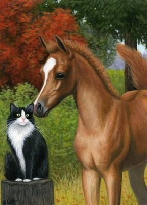 tuxedo cats and horses | Horses! / Foal horse tuxedo cat limited edition aceo print art by B ...