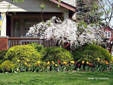 Front porch idea's