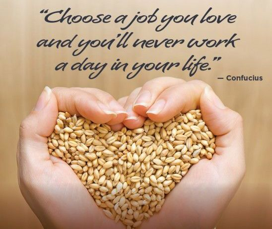 Love what you do  Share if you agree www.nextlevel.co.in  #loveyourjob #job