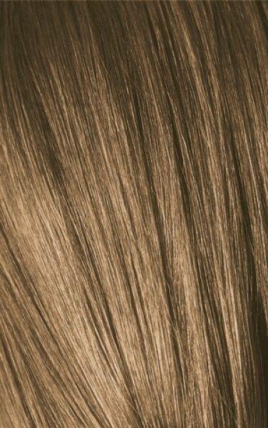 schwarzkopf igora expert mousse 7 0 barva na vlasy 100 ml hair color pinterest mousse. Black Bedroom Furniture Sets. Home Design Ideas