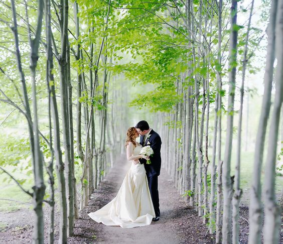 Photograph Along the Path by Ryan Brenizer https://weddingmusicproject.bandcamp.com/album/bridal-chorus-sheet-music-here-comes-the-bride-wedding-march-gentle-piano-short-long-versions