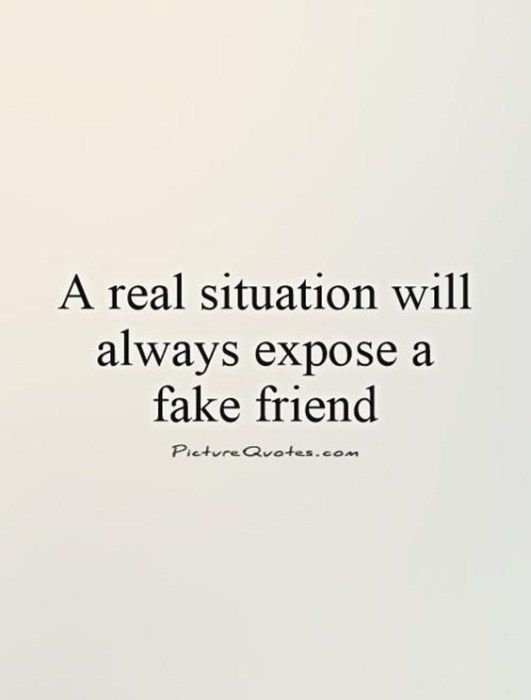 70 Fake People Quotes And Fake Friends Sayings 29