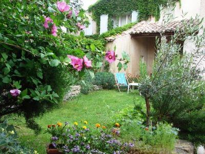 Notre petit jardin en Provence - Notre jardin en juillet 2008 - Montrez-nous votre jardin de ville