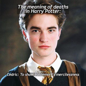 No It S To Show That If You Betray The Potter Fandom For Twilight You Die Harry Potter Hermione