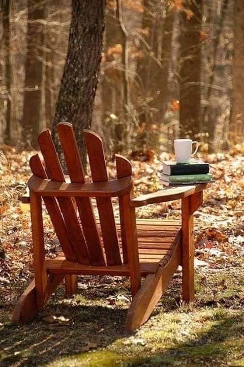 نسمــة صباحيــــة المحظوظ في الحياة هو من وجد أناسا مشعون مثل الضوء تتجاذب أنوار قلوبهم يبذلون ويقدمون الحب ال Autumn Rich Living Adirondack Chair
