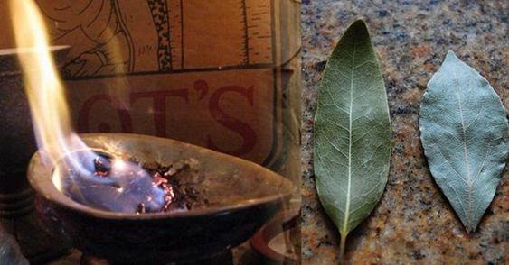 10 benefits of burning bay leaves.