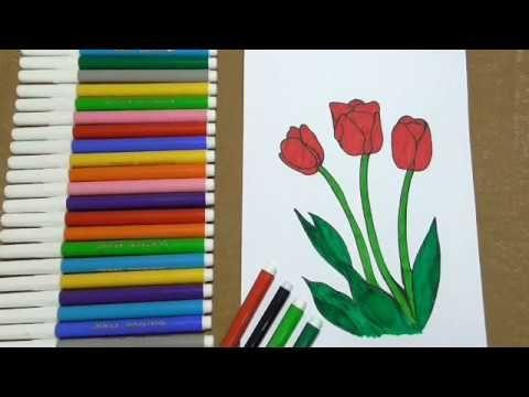 رسم الزهور بطريقه سهله Youtube Tulips Flowers Make It Yourself Flowers