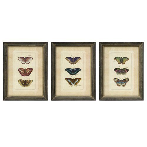 IMAX Butterfly Collection Wall Art, Set of 3, http://www.amazon.com/dp/B003X0EL4A/ref=cm_sw_r_pi_awdm_xQ-ivb1B4YSWY