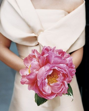 giant peonies, gorgeous gown