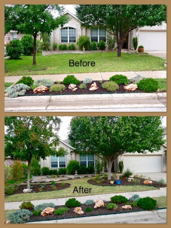 Landscaping Ideas Around Oak Trees : Around my trees if they were smaller circles of mulch the