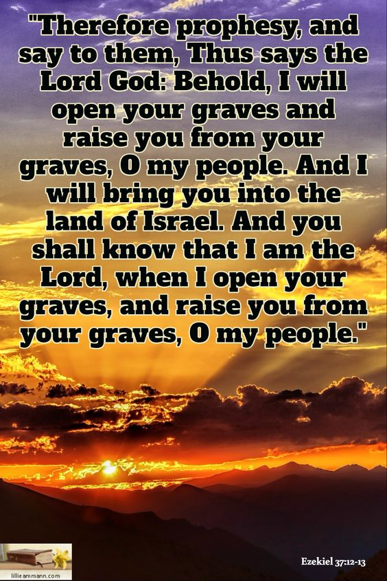 """Ezekiel 37:12-13 / """"Therefore prophesy, and say to them, Thus says the Lord God: Behold, I will open your graves and raise you from your graves, O my people. And I will bring you into the land of Israel. And you shall know that I am the Lord, when I open your graves, and raise you from your graves, O my people."""""""