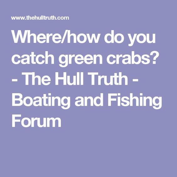 where how do you catch green crabs the hull truth boating and fishing forum fishing baits pinterest crabs do you and fishing
